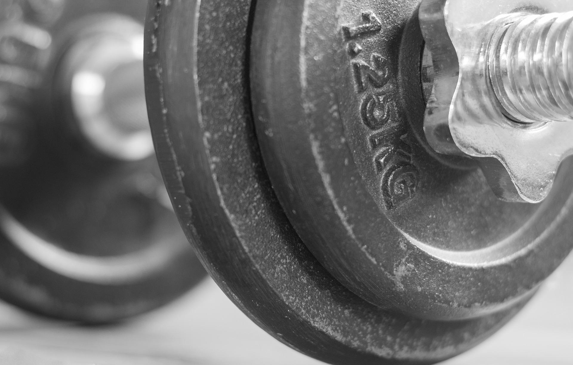 Bauchmuskeltrainer Fitnessgerät