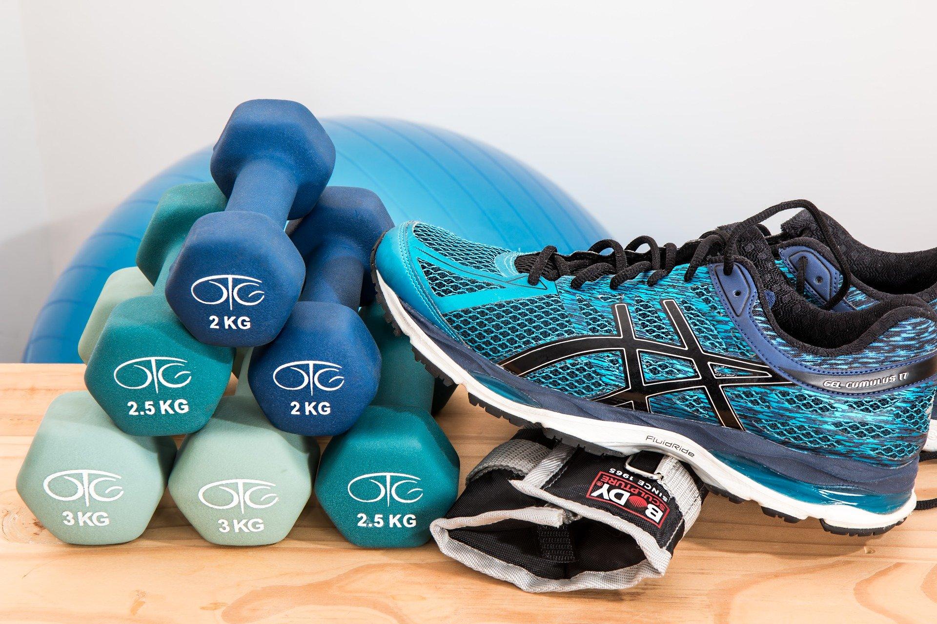 Climber Fitnessgerät