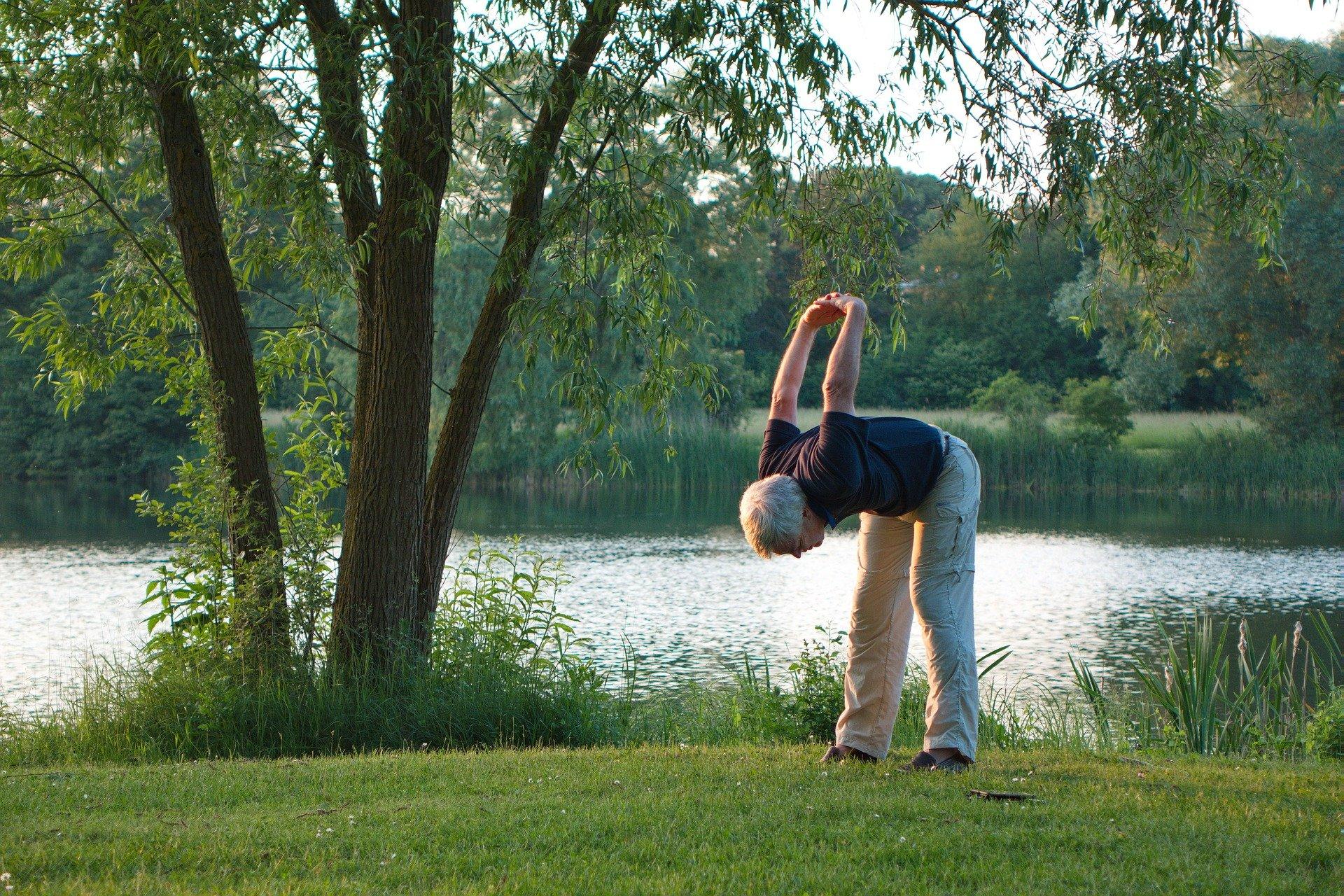 Rücken Fitnessgerät